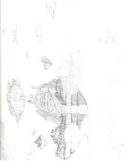 HP011