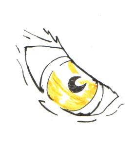 eye ink drawing
